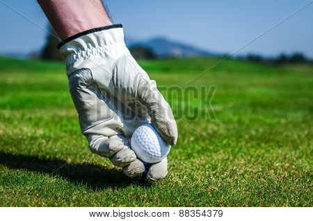 Hand With A Glove Is Placing A Tee With Golf Ball In The Ground. Golf Course With Green Grass With M