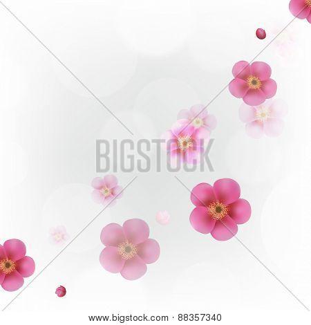 Pastel Flowers Wallpaper