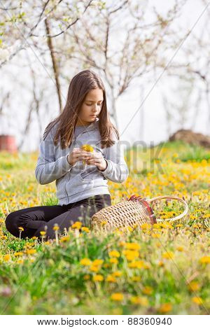 Child outdoors with dandelions. Girl sitting on a meadow, next to her is a baskets.