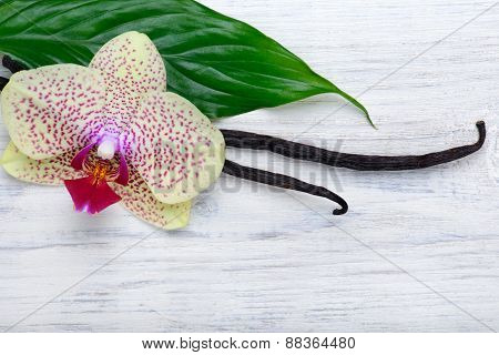 Vanilla Pods And Orchid Flower On Wooden Background. Copy Space.