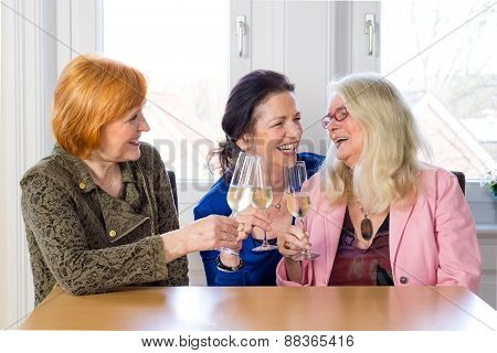 Happy Mom Friends Enjoying Glasses Of Wine