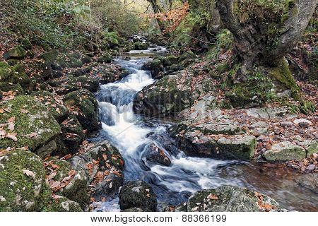 Glenary River Cutting Through Rocks
