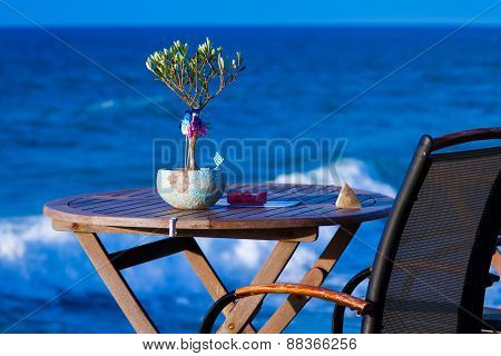 Little Olive Tree On The Table Against The Sea
