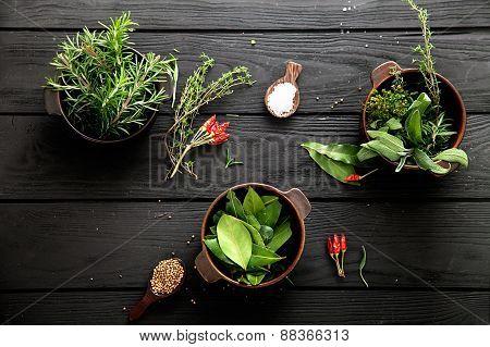 Mediterranean Ingredients