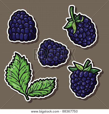 Blackberry stickers