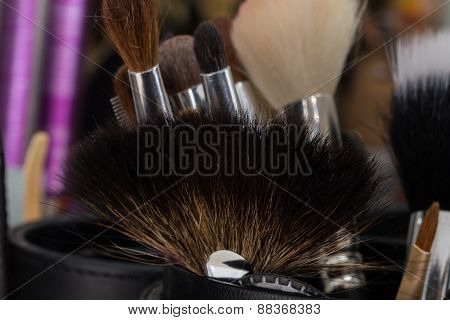 Professional make-up brush. Make-up brushes in a special case
