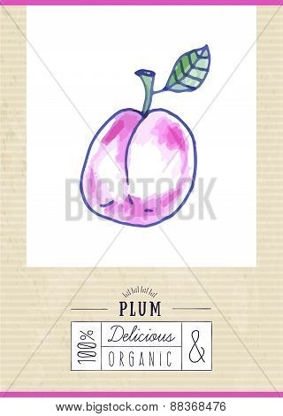 Vintage Label With Hand Drawn Plum