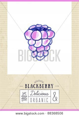 Vintage Label With Hand Drawn Blackberry
