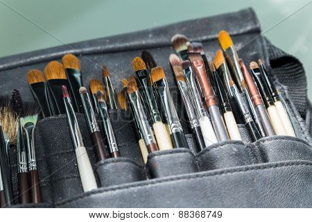 Professional make-up brush. Make-up brushes in a special case.