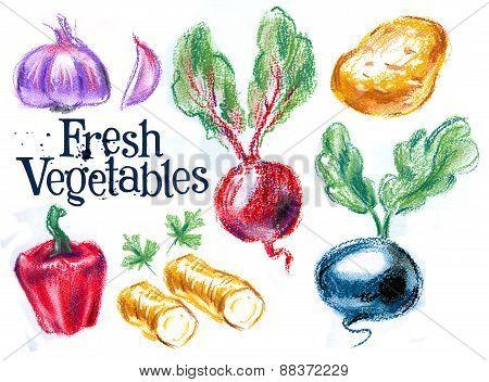 fresh vegetables on white background. sketch, illustration