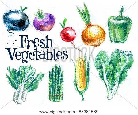 farming. fresh vegetables on white background