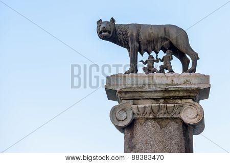 Campidoglio wolf of rome