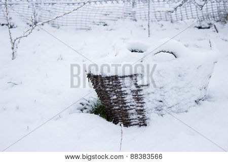 Basket In The Snow