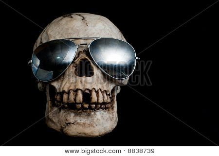 Ancient Human Skull Wearing Sunglasses