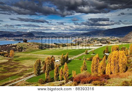 Lake Wanaka, view from mount Roys, South Island,  New Zealand