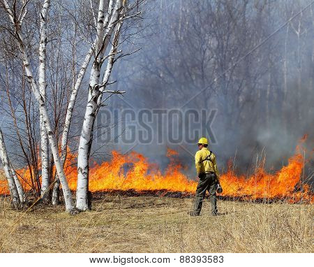 Controlled Prairie Burn