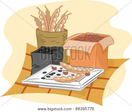 Illustration of Seeds Dried Out Before Being Packed and Served