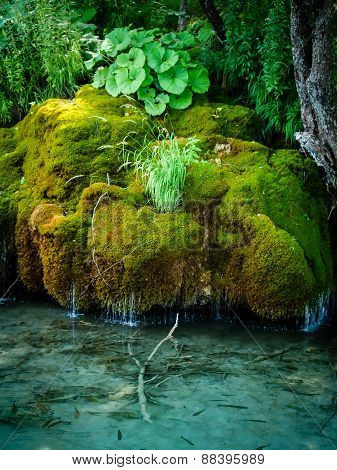 Plitvice - moss waterfall