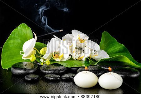 Beautiful Spa Concept Of Blooming White Orchid Flower; Phalaenopsis; Green Leaf With Dew And Candles