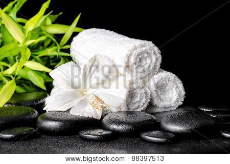 Spa Concept Of White Hibiscus Flower, Bamboo And Towels On Zen Basalt Stone With Drops, Closeup