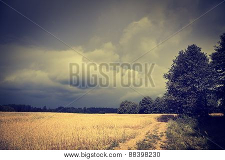 Dark Toned Landscape with Field and Moody Sky