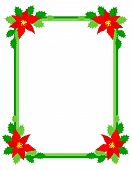 foto of poinsettia  - Green christmas frame with poinsettia flowers on edges - JPG