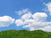 Sky And Grass poster