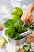 pic of pestle  - Metal mortar and pestle with fresh mint and ingredients for  mojito - JPG