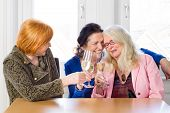 image of close-up middle-aged woman  - Close up Happy Adult Women Best Friends Enjoying Glasses of Wine at the Wooden Table While Celebrating Something - JPG