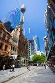 foto of cbd  - Sydney - JPG