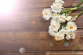 foto of daffodils  - Fresh spring yellow daffodils flowers in ray of light on brown painted wooden planks - JPG