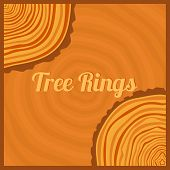 picture of cutting trees  - Tree rings - JPG