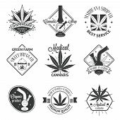 image of marijuana leaf  - Set of medical marijuana logos - JPG