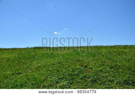 Land Horizon - Green Meadow And Blue Sky