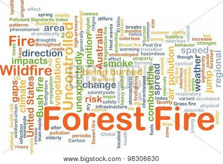 Background concept wordcloud illustration of forest fire