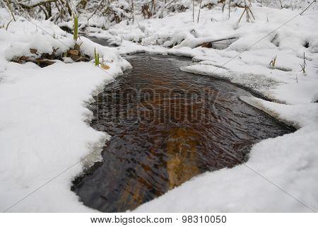 Small River At Winter
