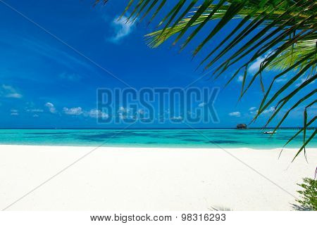 White tropical beach in Maldives with few palm trees and blue lagoon