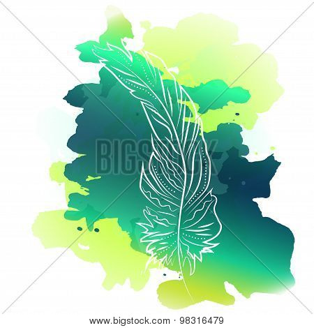 Feathers with watercolor background
