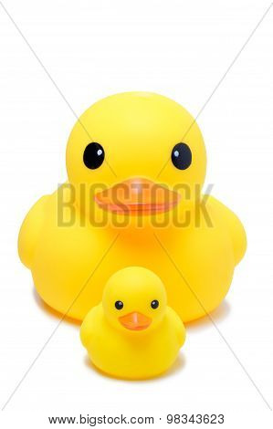 Yellow Rubber Duck Toy In Isolate White Background