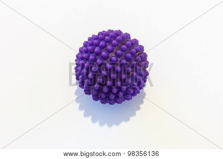 Purple Dog Ball Isolated On White