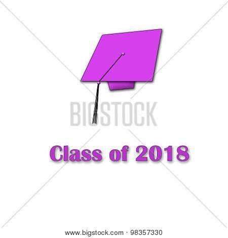 Class of 2018 Pink on White Single Large