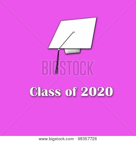 Class of 2020 Pink on White Single Lg