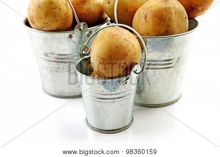Young potatoes in metal buckets isolated on white