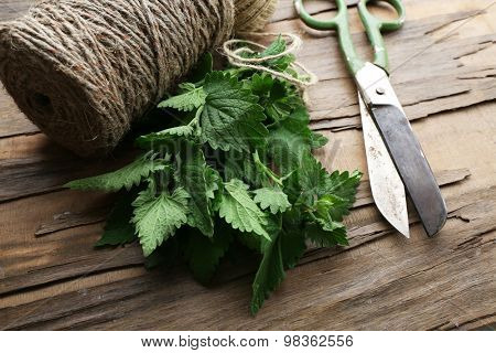 Leaves of lemon balm with rope and scissors on wooden table, closeup