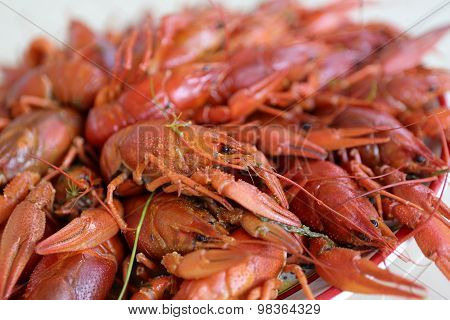 Plate With Cooked Crayfish