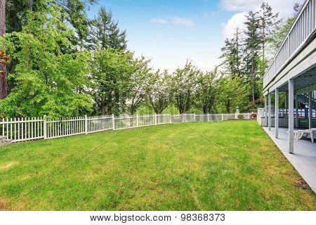 Large Grass Filled Back Yard.