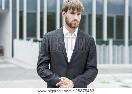 Sexy Businessman In Suit