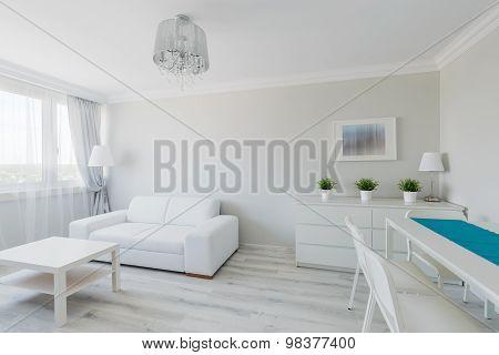 Neat Furnished Elegant Apartment