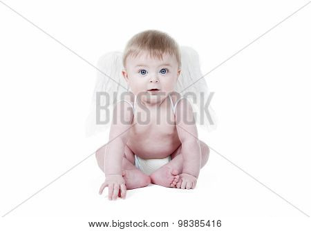Cute baby cupid with angel wings in front of a white background