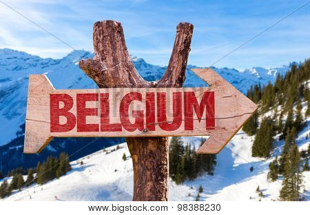 Belgium wooden wooden sign with winter background